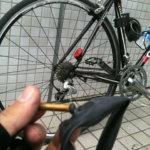 ロードバイクで上尾榎本牧場に行って来た!子猫がもっふもふ!