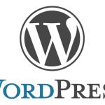 WordPress の記事ページに表示される「カテゴリー」「タグ」「投稿日」などを非表示にする。