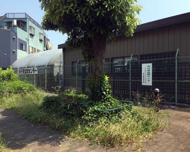 安行東盆栽センター